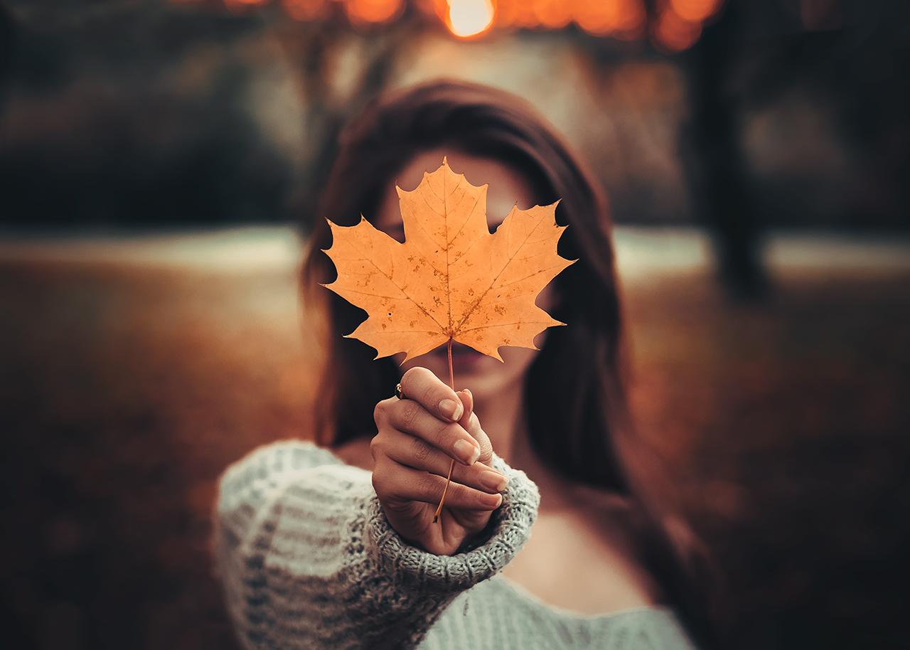 autumnleaf00